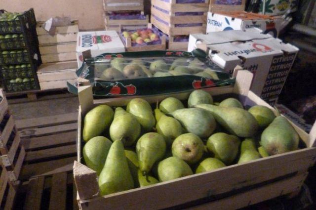 В Кирове уничтожили более тонны санкционных фруктов и овощей