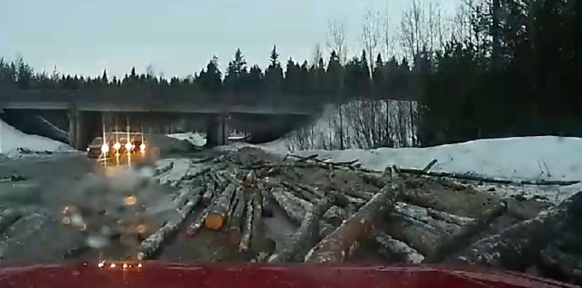В Кировской области водитель чуть не погиб под бревнами